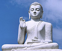 The Seated Buddha in Sri Lanka Ponders the Meaning of Twit